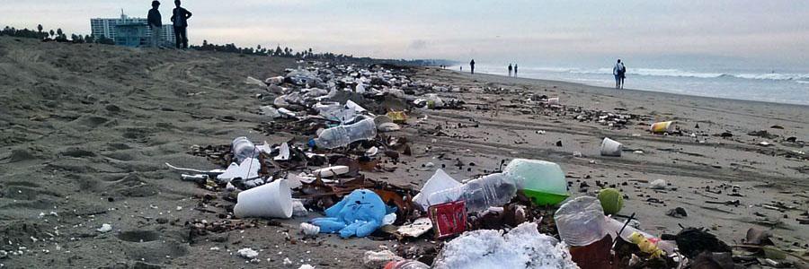 trash-on-the-beach